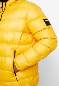 Replay Plus - Veste d'hiver - yellow - 4