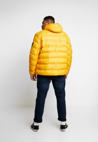 Replay Plus - Veste d'hiver - yellow - 2