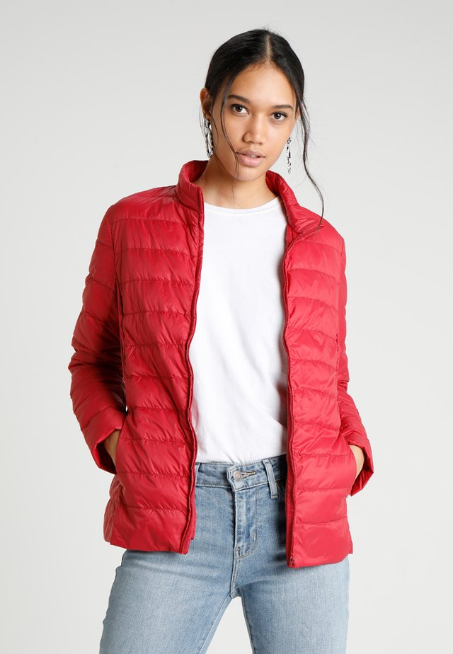 PRETTY JACKET - Gewatteerde jas - cherry