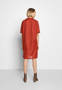 Strenesse - DRESS DALENA - Denní šaty - umber - 2