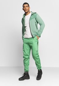 Salewa - AGNER - Trousers - myrtle - 1
