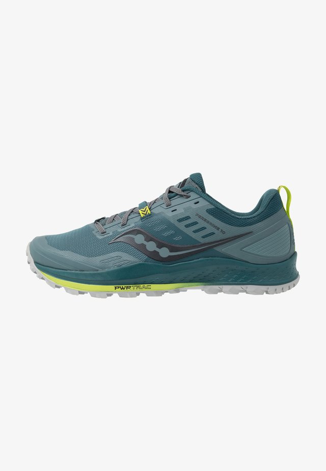 PEREGRINE 10 - Trail running shoes - steel