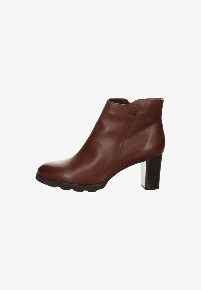 SALAMANDER  - Classic ankle boots - dunkel-braun