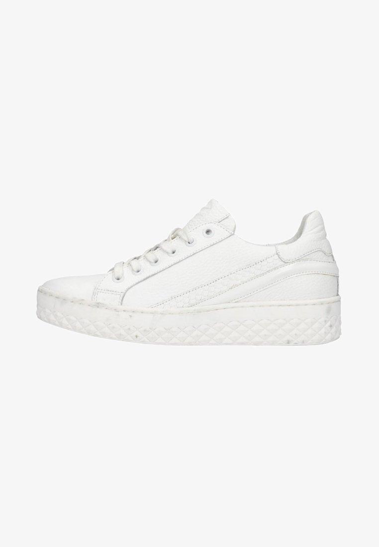 sacha - Trainers - white/white