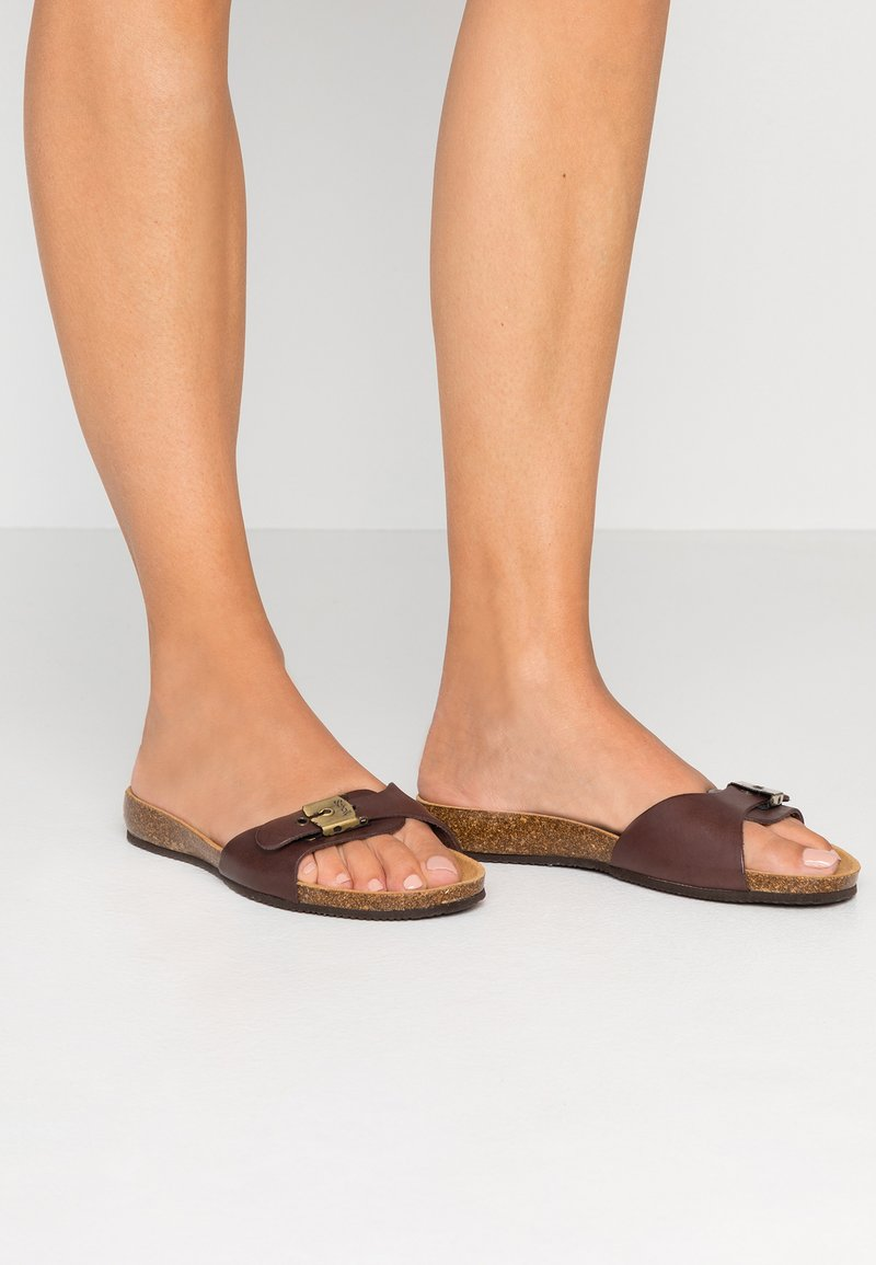 Scholl - BAHAMA 2.0 - Slippers - brown