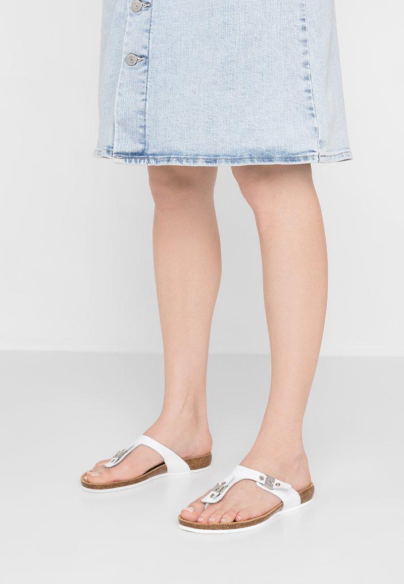 Scholl - BIMINI  - T-bar sandals - weiß