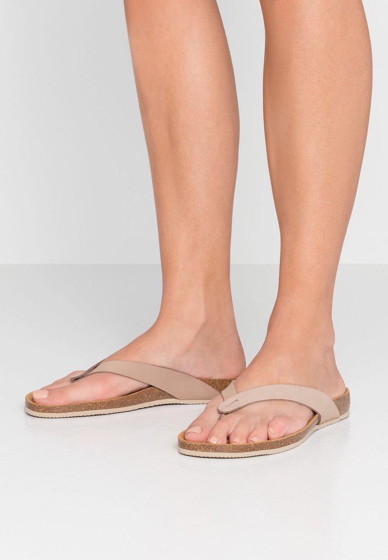Scholl - TIST 2.0 - Sandalias de dedo - beige