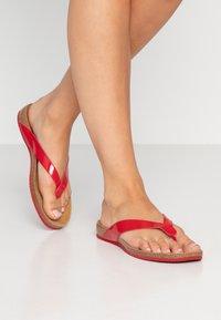 Scholl - TIST - Sandalias de dedo - red - 0