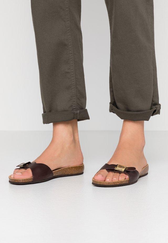 BAHAMAIS - Pantolette flach - marron fonce