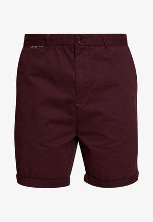 CLASSIC CHINO  - Shorts - aubergine