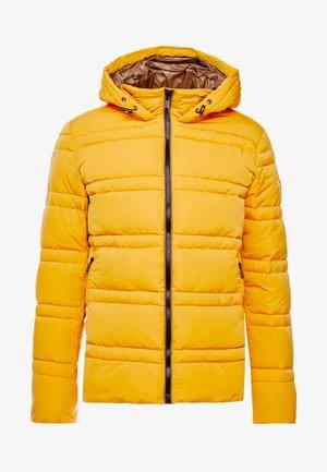 CLASSIC HOODED PRIMALOFT JACKET - Veste d'hiver - sunflower yellow