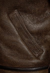 Schott - Lederjacke - dark brown - 2