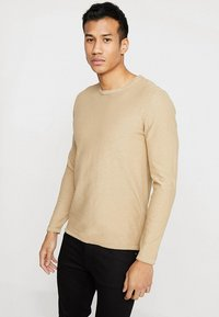 Selected Homme - SLHNEWACIDS CREW NECK - Trui - cornstalk - 0