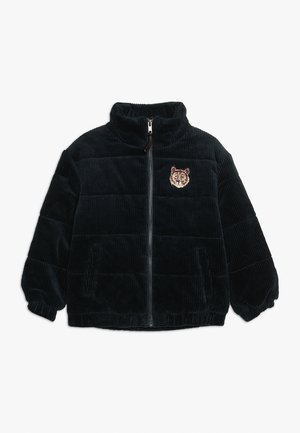 EVANDER JACKET - Zimní bunda - dark blue
