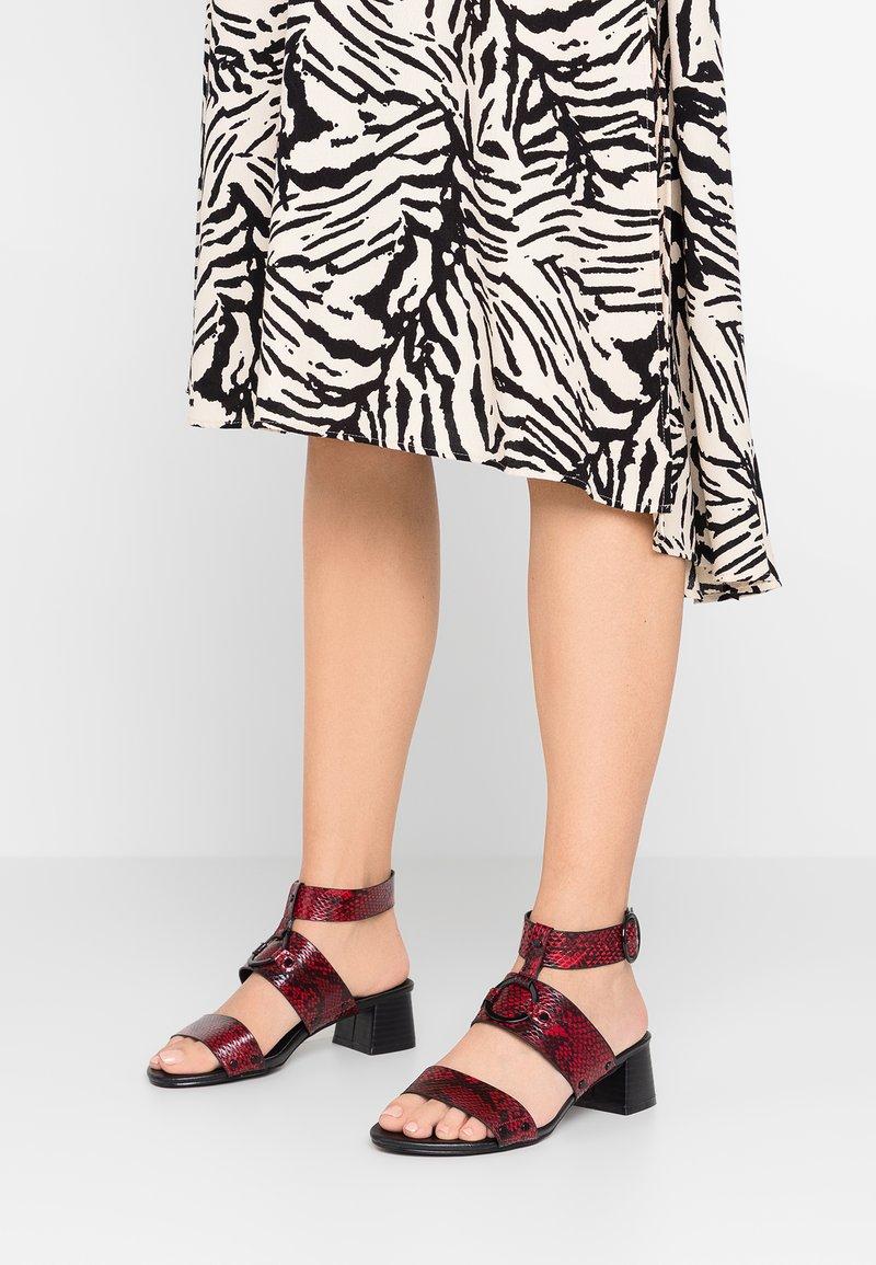 Simply Be - WIDE FIT DARIA BLOCK HEEL DETAIL - Sandals - multicolor