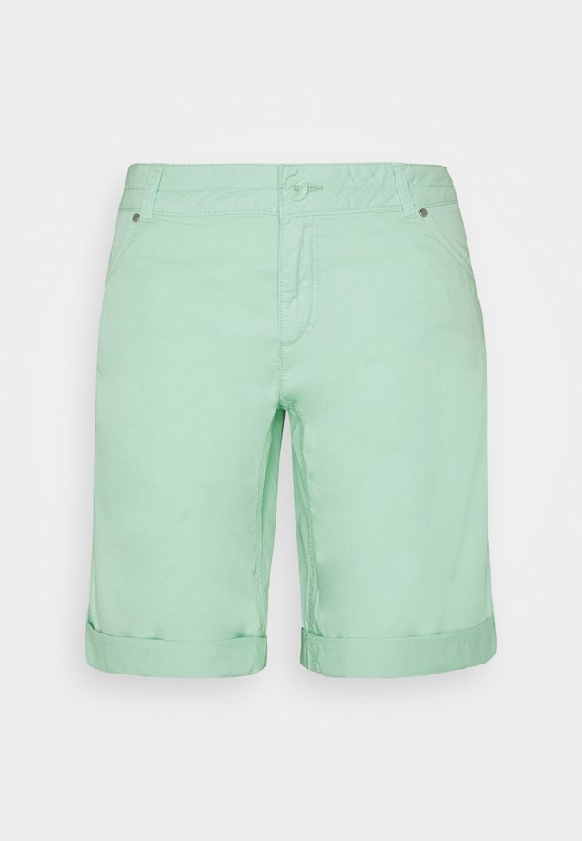 Shorts - blue green