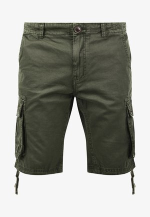 VIZELA - Shorts - ivy green