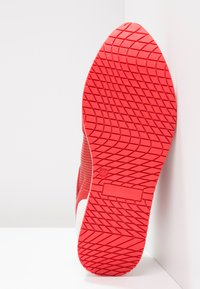 Steven New York by SPM - LEANRUN - Trainers - red white - 6