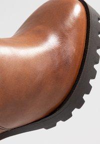 Steven New York by SPM - JONNIE - High heeled ankle boots - cognac - 2