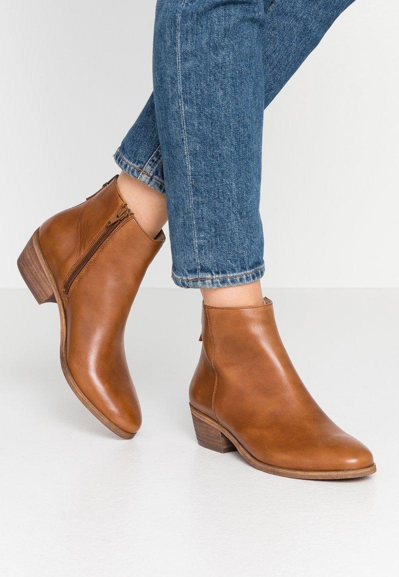 Steven New York by SPM - MAIZIP - Ankle boots - cognac