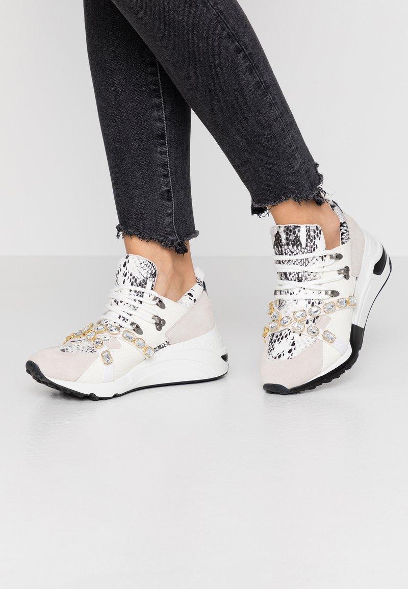 Steve Madden - CREDIT - Sneakers - white