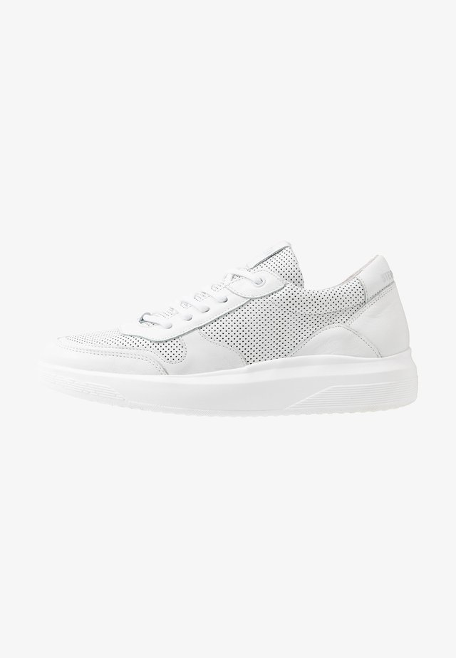 FRANKLO - Trainers - white