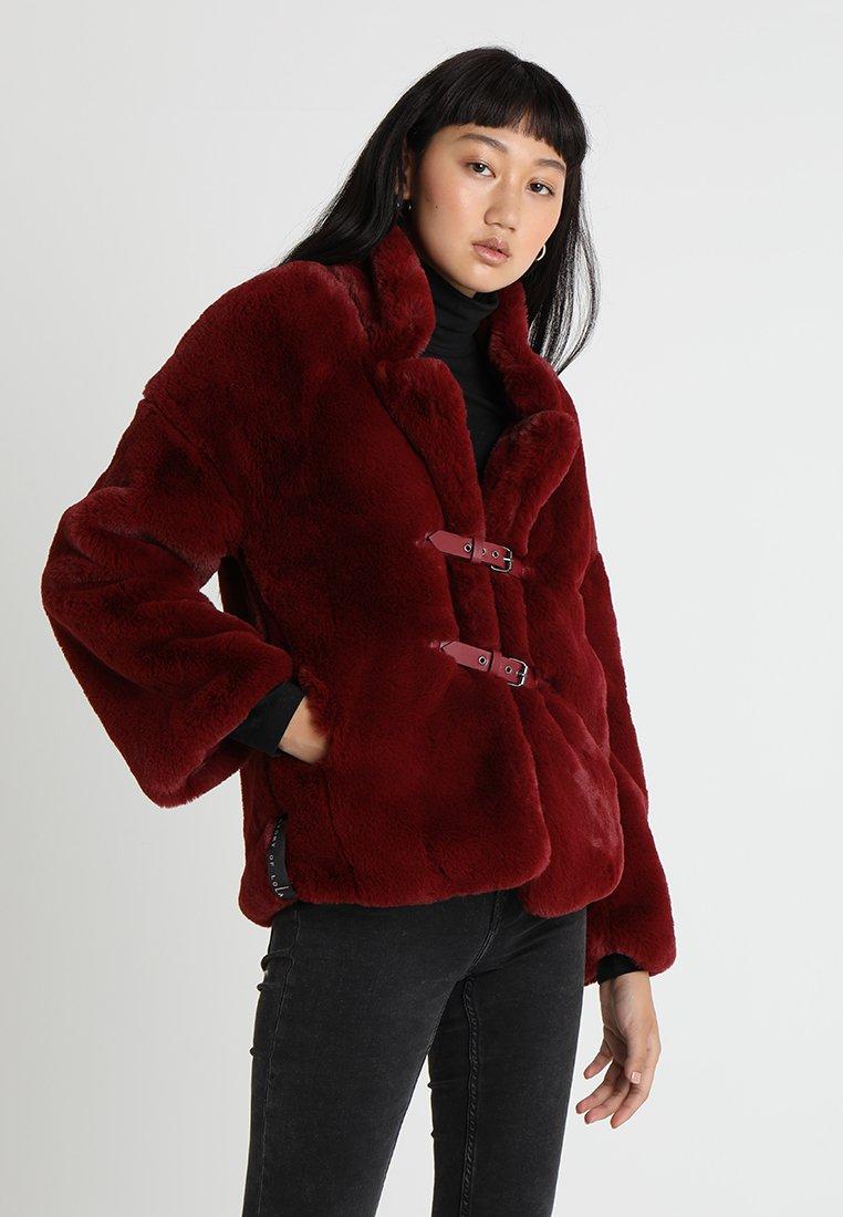 Story Of Lola - TEDDY BEAR WITH BELT - Winter jacket - burgundy