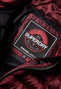 Superdry - BLISSE - Abrigo de plumas - berry - 4
