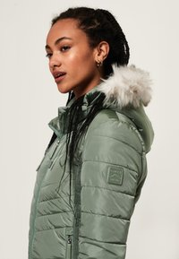 Superdry - Jas - turquoise - 3