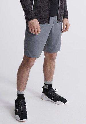 Shorts - steel grey
