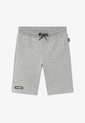ACTIVE HEAVY INTERLOCK ALL-OVER - Pantalón corto de deporte - grey