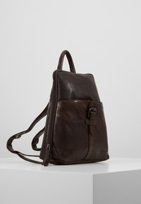 Spikes & Sparrow - Tagesrucksack - dark brown - 3
