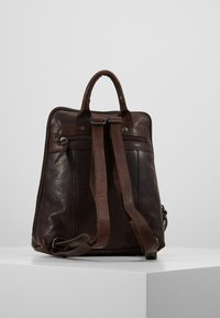 Spikes & Sparrow - Tagesrucksack - dark brown - 2