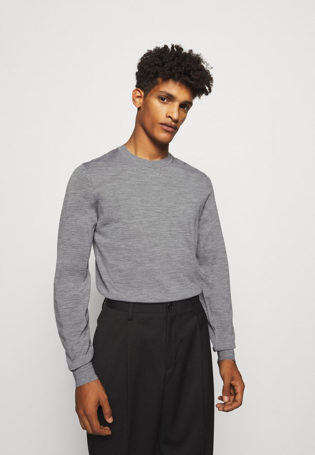 CREW NECK - Jumper - grey
