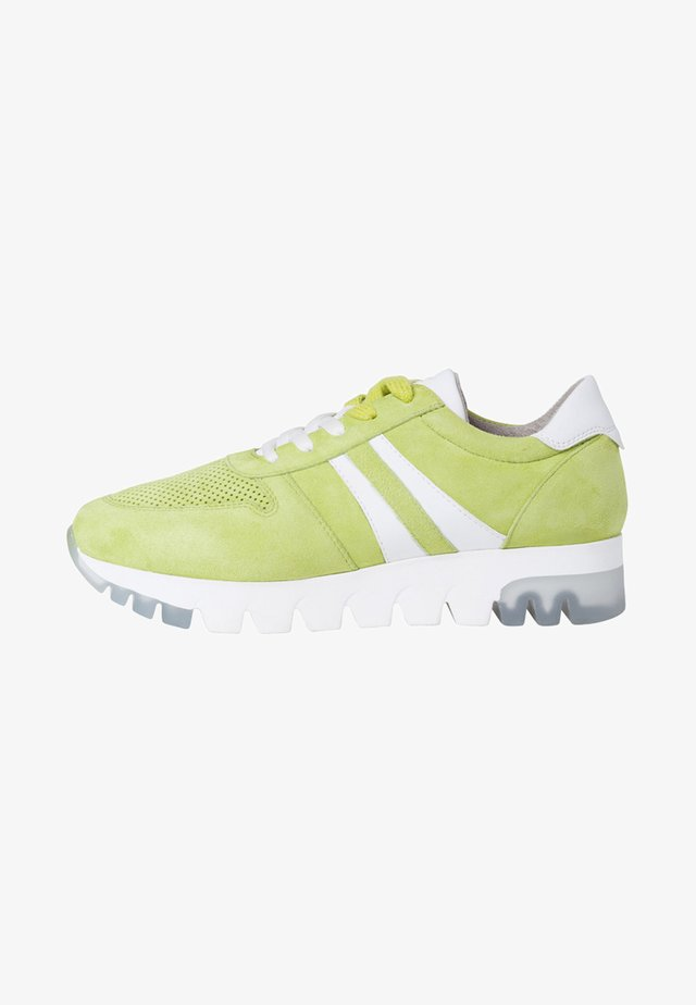 LACE-UP - Sneakers laag - apple