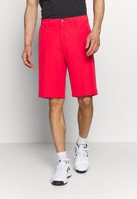 adidas Golf - SHORT - Sportovní kraťasy - real coral - 3