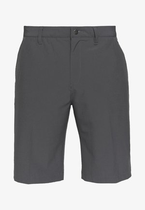 SHORT - Korte sportsbukser - grey five