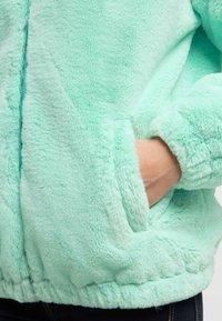 taddy - Winter jacket - mint - 3