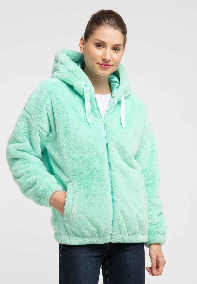taddy - Winter jacket - mint