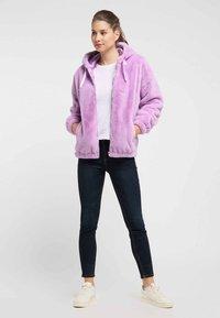 taddy - Winter jacket - purple - 1