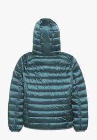 Save the duck - IRIS - Winter jacket - evergreen - 1