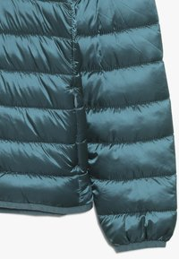 Save the duck - IRIS - Winter jacket - evergreen - 3