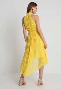 Ted Baker - NADETTE PLEATED COLLARED DRESS - Maxikjoler - yellow - 3