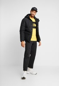 The North Face - STRIPE BOX TEE - Long sleeved top - yellow/black - 1