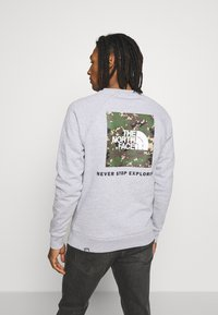The North Face - RAGLAN BOX CREW - Sweater - light grey - 2