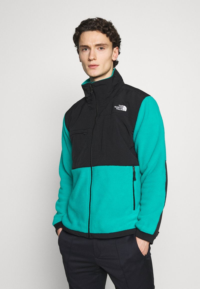 The North Face - DENALI JACKET  - Fleecová bunda - jaiden green