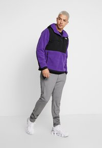 The North Face - DENALI ANORAK - Bluza z kapturem - hero purple - 1