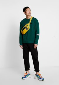 The North Face - LIGHT CREW - Sweatshirt - night green - 1