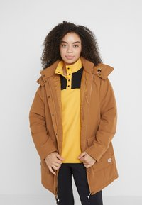 The North Face - INSULATED ARCTIC MOUNTAIN JACKET - Cappotto corto - chipmunk brown - 4
