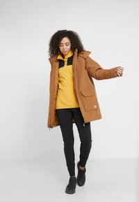 The North Face - INSULATED ARCTIC MOUNTAIN JACKET - Cappotto corto - chipmunk brown - 1